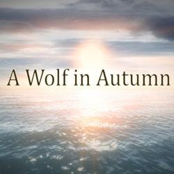 A-Wolf-in-Autumn